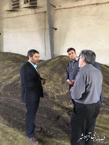 با پیگیری انجام گرفته بذر کلزا هایولا ۵۰ بمیزان لازم از امروز در شهرستان آزادشهر توزیع می شود