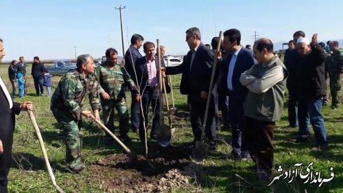 مراسم درخت کاری در روستای آقچلی قرخلر