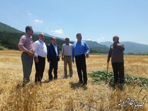 بازدید فرماندار شهرستان آزادشهر از طرح یکپارچه سازی اراضی نسق کشاورزی در شهر نوده خاندور