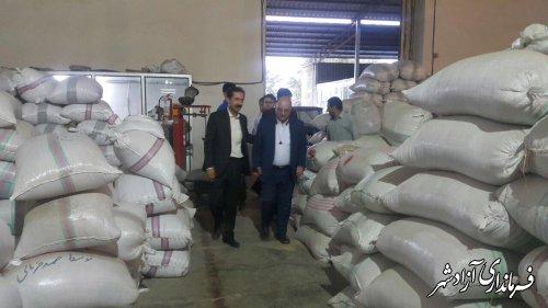 بازدید فرماندار شهرستان آزادشهر از مجتمع کشت و صنعت ممتاز در نگین شهر