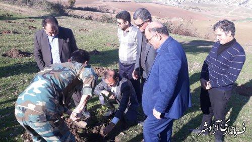 یک هکتار از اراضی ملی شهرستان آزادشهر رفع تصرف و نهال کاری شد