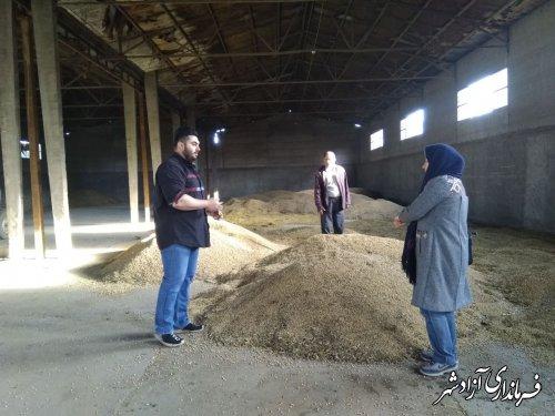 بازدید مسئول مدیریت جهادکشاورزی آزادشهر از مرکز خرید سویا
