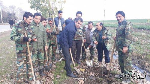 ادامه روند کشت نهال در حاشیه جاده مسیر ازادشهر به گنبد توسط اداره منابع طبیعی