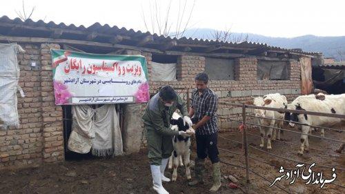 اجرای طرح واکسیناسیون و ویزیت رایگان دام ها توسط اداره دامپزشکی شهرستان به مناسبت ایام الله دهه فجر