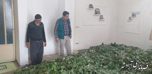 ۲۵ درصد رشد نوغانداری در شهرستان آزادشهر