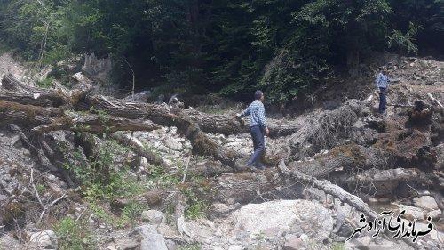 جمع آوری درختان شکسته و سیل آورده در بستر رودخانه ها
